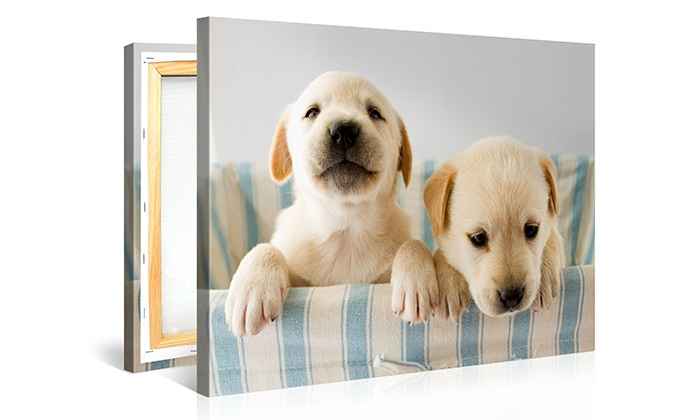 Custom Canvas Prints from CanvasOnSale  (Up to 87% Off). Four Sizes Available.