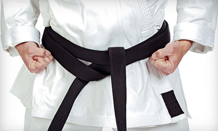 S.M.A. Karate - Gardiners: 10 Karate Classes or One Month of Unlimited Kickboxing, Karate, or Kung Fu Classes at S.M.A. Karate (Up to 87% Off)