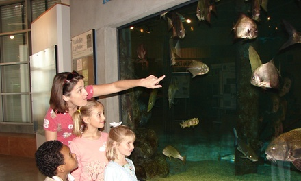 Up to 55% Off Admission to Indoor Estuarium at Dauphin Island Sea Lab