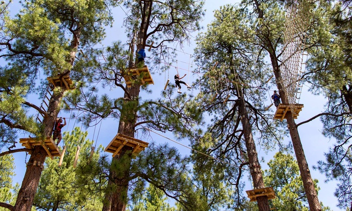 Flagstaff Extreme Adventure Course - Flagstaff : Outdoor Obstacle Course for Four at Flagstaff Extreme Adventure Course (Up to 33% Off)