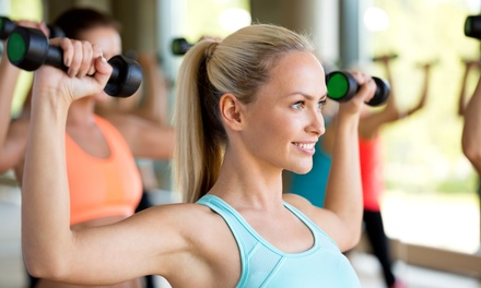 Fitness Packages at Ottawa Lifestyle Center (Up to 86% Off). Two Options Available.