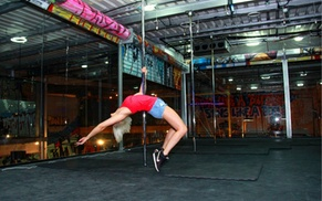 Polercise Dubai: Three, Six or Nine Classes in Beginners Pole Fitness, Aerial Hoop or Acroflex at Polercise Dubai (Up to 52% Off)
