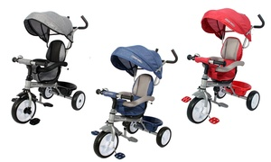 Poussette Tricycle évolutif 2 en 1