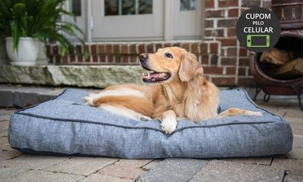 Patas e Asas – Osasco: 1, 5 ou 10 diárias de hotel para cães ou day care (creche)   (opção com banho e hidratação)