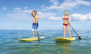 OEX  Sunset Beach: One-Hour Standup-Paddleboard Rental or Two-Hour Kayak Rental for Two or Four from OEX Sunset Beach (58% Off)