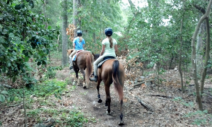 Pfeiffer Riding Stables - 2: $40 for a 60-Minute Horseback Trail Ride for Two from Pfeiffer Riding Stables ($80 Value)