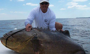 Up to 46% Off Fishing Trip at Charter Fishing Naples, plus 6.0% Cash Back from Ebates.