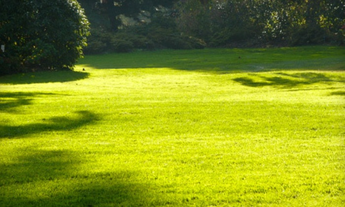 Quality One Landscape & Design, LLC - Cleveland: 6,000 or 12,000 Square Feet of Lawn Aeration from Quality One Landscape and Design, LLC (Up to 79% Off)