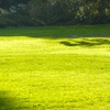 Up to 79% Off Lawn Aeration