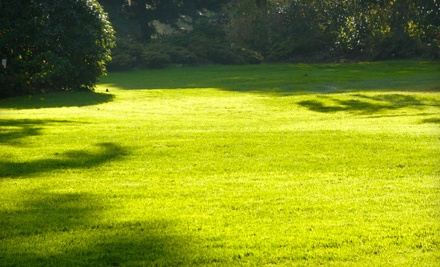 Lawn Aeration for Up to 6,000 Square Feet ($140 value) - Quality One Landscape & Design, LLC in