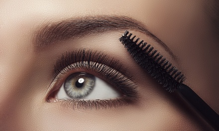 Brow Sculpt & Tint ($19); $35 to Add Eyelash Tint at The House of Flawless and Gorgeous by Carrie Wood (Up to $80 Value)