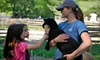 Stamford Museum and Nature Center - Stamford: Family-Plus Membership or a Family Membership to Stamford Museum & Nature Center (Up to 51% Off)
