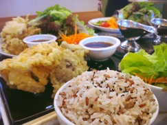 Cha Cha Thai: One Order of Spring-rolls with Purchase of Two Lunch Entrees  at Cha Cha Thai
