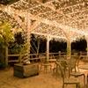 Solar-Powered Outdoor/Indoor LED Lights