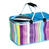 $17.99 for an Insulated Folding Basket