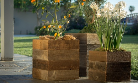 3-Pack Pacific Royal Reclaimed Wood Square Planter Box