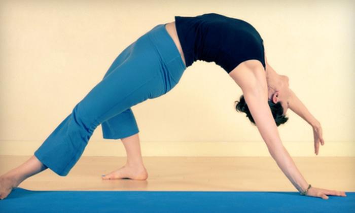 Shiva Shakti Yoga Center - South Side: 10 or 15 Yoga Classes at Shiva Shakti Yoga Center in Waltham (Up to 68% Off)