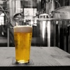 Up to 35% Off Brewing Experience at Barnstormer Brewing