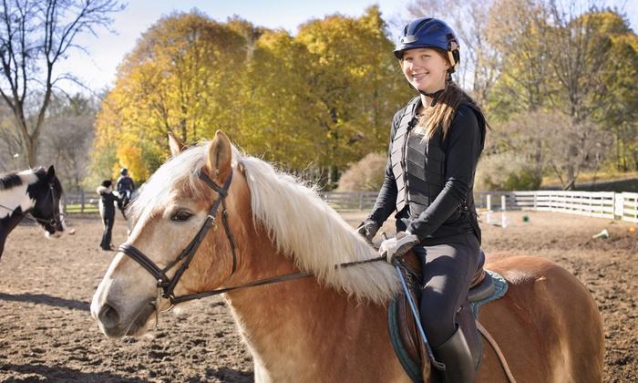 1, 2 ou 3 cours d'équitation individuels ou collectifs d'une heure chacun dès 15 € au Club Hippique de Saverne