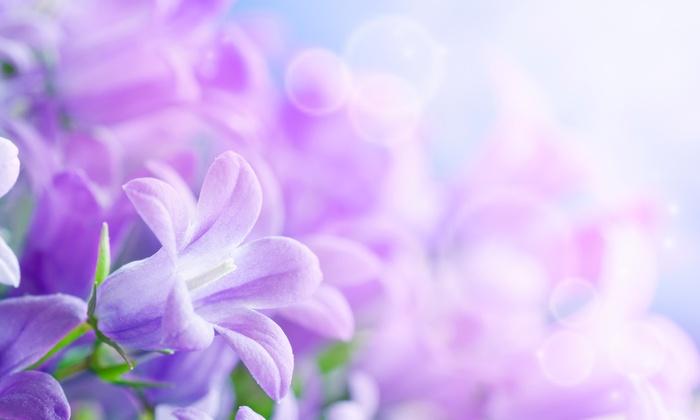 The Flower Studio - Orlando: $25 for $50 Groupon — The Flower Studio