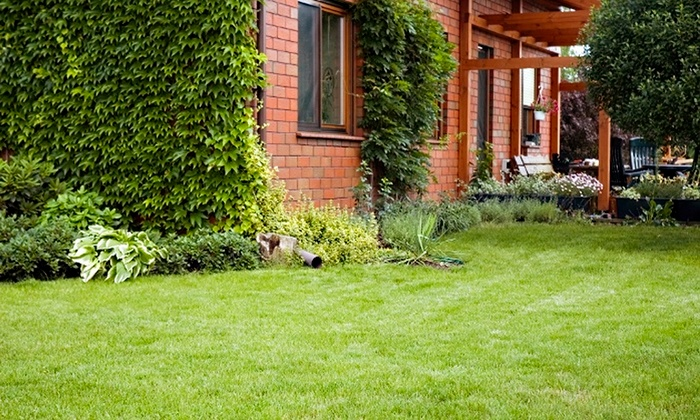 Weed Man - Winchester - Washington DC: $49 for Lawn Fertilizer with Weed-Control and Crabgrass Treatment from Weed Man ($200 Value)