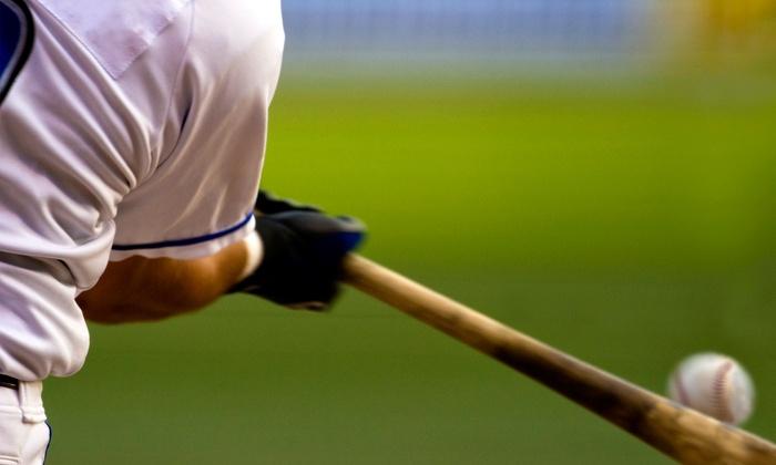 Brandywine Valley Baseball Organization - West Chester: $41 for $75 Groupon — Brandywine Valley Baseball Organization