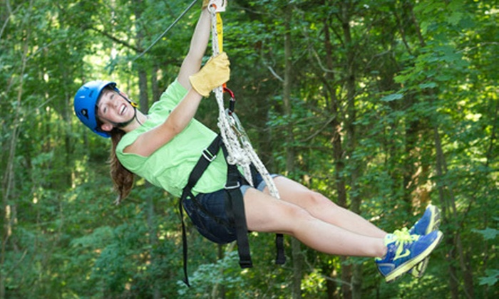 Honeysuckle Hill Farm - Coopertown: Treetop-Canopy Zipline Tour for Six, Four, or Two from Honeysuckle Hill Farm (Up to 53% Off)