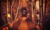 RISE of the Jack O'Lanterns, Inc [Old Westbury Gardens] - RISE of the Jack O'Lanterns: $10 for Admission for One to RISE of the Jack O'Lanterns ($20 Value). 20 Times Available.