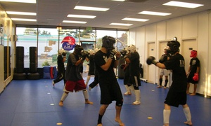 International Martial Arts: $40 for $110 Worth of Martial-Arts Lessons — International Martial Arts
