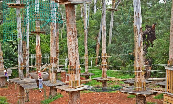 Trees Adventure In Dwellingup Western Australia Groupon