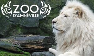 Zoo d'Amneville: 1 entrée enfant ou adulte pour le zoo et l'aquarium en option dès 24,90 € au Zoo d'Amneville