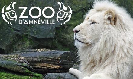 1 entrée enfant ou adulte pour le zoo et laquarium en option dès 24,90 € au Zoo dAmneville