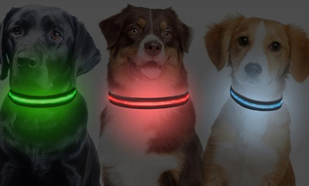 Adozio LED Dog Collar