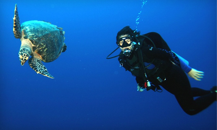 Desert Divers - St. Francis Cabrini: Open-Water, Beginner, or Refresher Scuba Course at Desert Divers (Up to 62% Off)