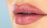One-Day Mac Lip Perfection Course with Certificate for One or Two at Amore College (Up to 64% Off)