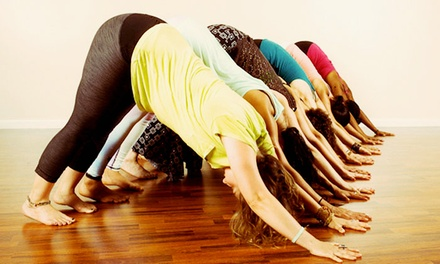 10 or 20 Yoga Classes at One Down Dog (Up to 67% Off)
