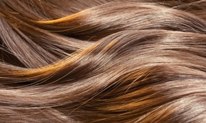 Haircut, Highlights, And Style From Simply Polished (55% Off)