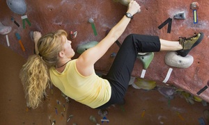 Diamond Rock: Belay-Certification Class with Day Pass for One, Two, or Four at Diamond Rock (Up to 57% Off)