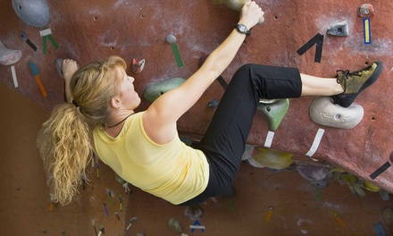 Belay-Certification Class with Day Pass for One, Two, or Four at Diamond Rock (Up to 57% Off)
