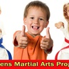 $20 for Karate Lessons at Pace Institute of Karate of Vernon