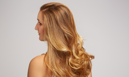 Haircut with a Blowout, Ombre, or All-Over Coloring from Victoria Rieken at G Best Color Salon (Up to 54% Off)