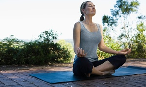 Hatha Yoga with Helena: 10 or 20 Yoga Classes or 1 Month of Unlimited Yoga Classes at Hatha Yoga with Helena (Up to 62% Off)