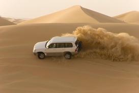 Pranav Tourism LLC: Dinner or Red Dune Desert Safari for One or Two with Pranav Tourism