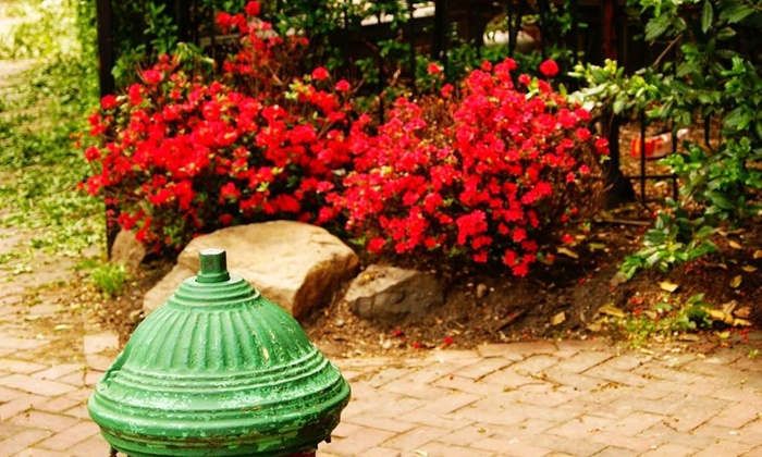 Mill Hill Tour - Trenton: Up to 51% Off Garden Tour at Mill Hill Tour