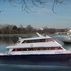 Up to 55% Off Harbor Cruises on the Potomac
