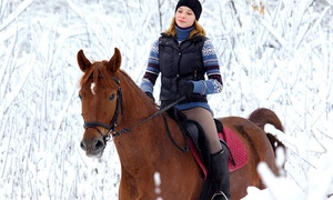 Golden Ears Trail Riding: Horseback Trail Riding for Two or Four from GoldenEar (Up to 44% Off)