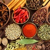 46% Off at Savory Spice Shop