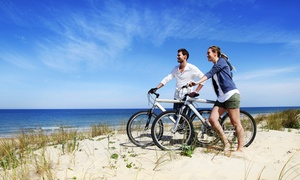 World Wide Bike Rentals: Up to 83% Off San Francisco Bike Tour at World Wide Bike Rentals