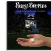 Fairy Berries Outdoor Lights (10-Pack)