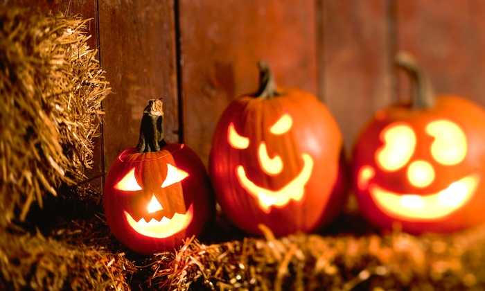 Siegel's Cottonwood Farm - Crest Hill: $35 for a Pumpkin-Fest Experience for Four at Siegel's Cottonwood Farm (Up to $71 Value)